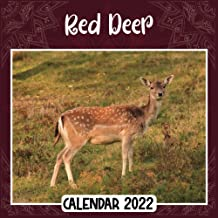 Red Deer 2022 Calendar: Red Deer mini calendar 2022 2023, Red Deer 2022 Planner with Monthly Tabs and Notes Section, Red D...