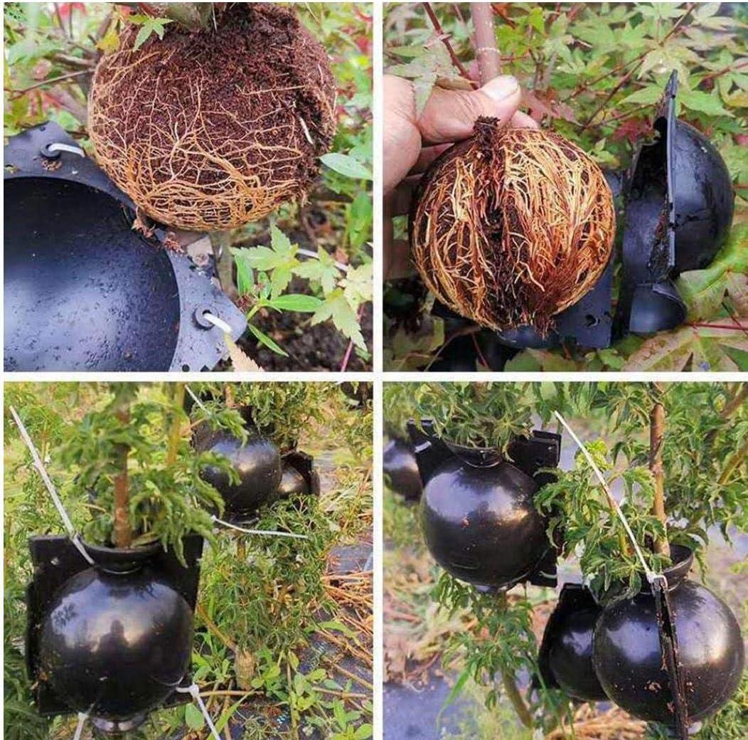 per radici per giardino Dispositivo di radicamento per piante interni ed esterni LAANCOO ad alta pressione