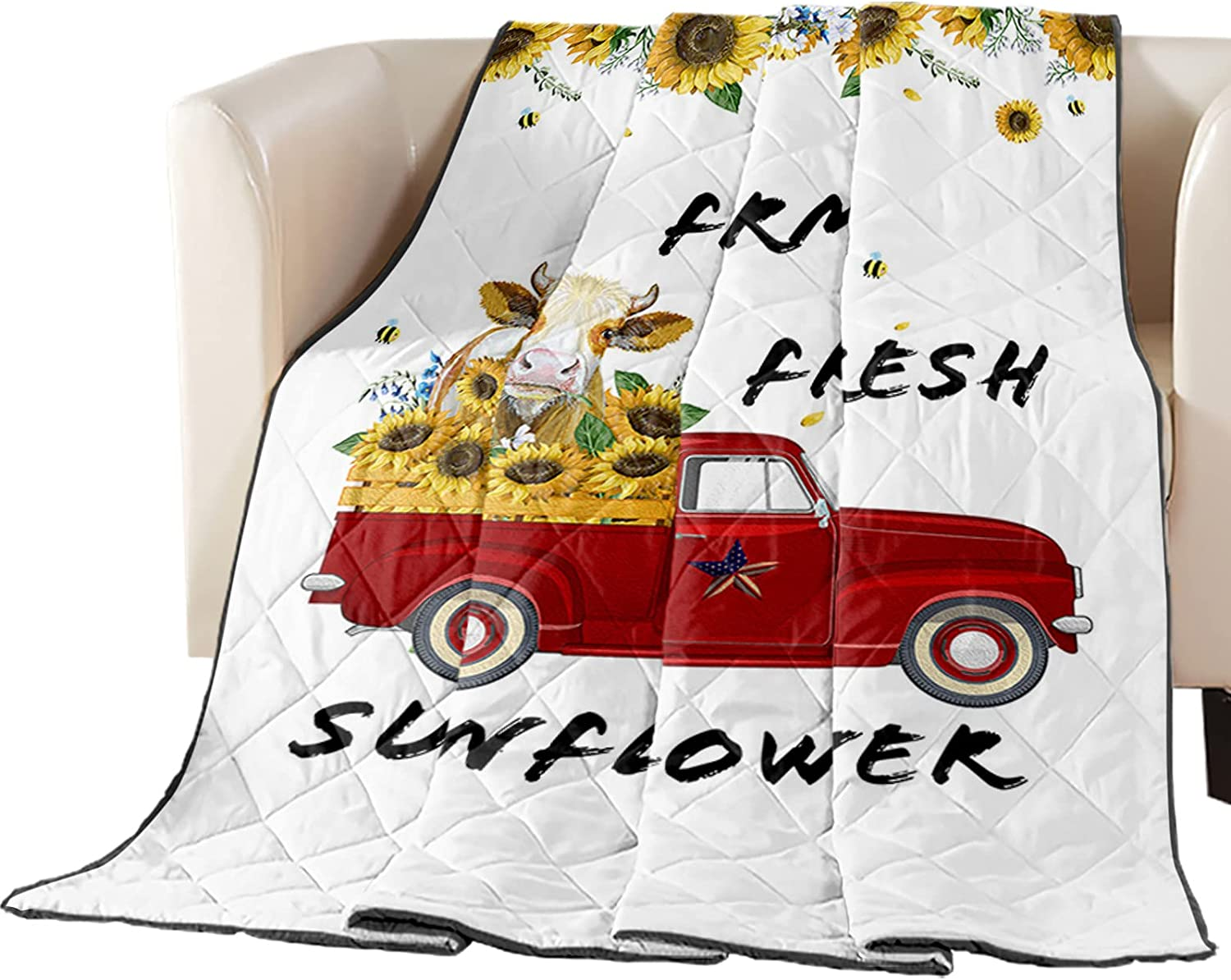 Spring new New York Mall work Down Alternative Reversible Comforter Fill Quilted Cotton Throw