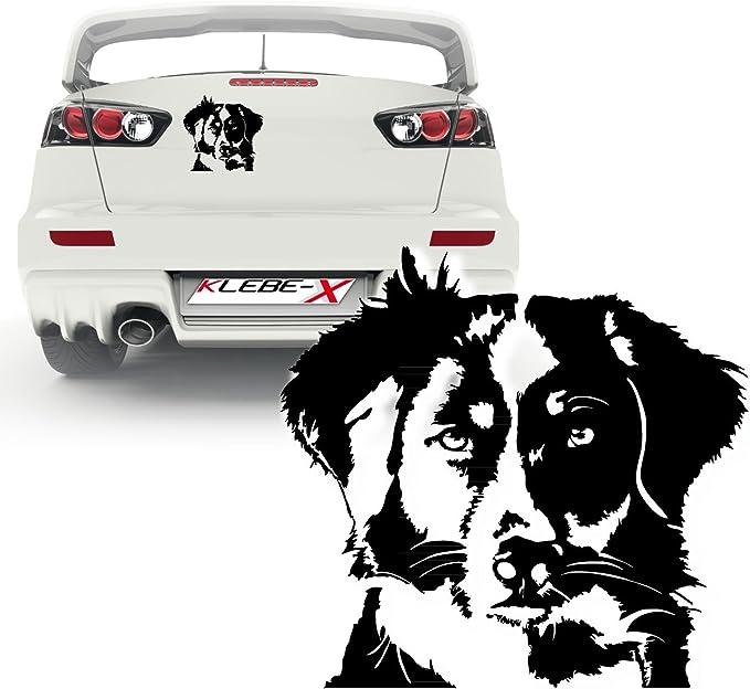 Australian Shepherd Aufkleber Heck Cartattoo Wandaufkleber Hundemotiv Kb236 Auto