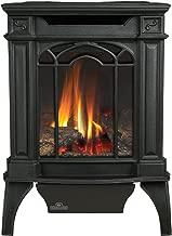 Napoleon GDS20N Fireplace, Arlington Natural Gas Compact Stove Direct Vent 20,000 BTU - Painted Black