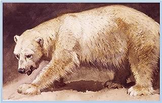 Orenco Originals Polar Bear by Archibald Thorburn Bird Counted Cross Stitch Pattern