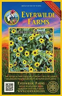 Everwilde Farms - 2000 Creeping Zinnia Wildflower Seeds - Gold Vault Jumbo Seed Packet