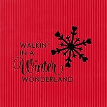 Fastasticdeals Walking' in A Winter Wonderland Novelty Square Aluminum Metal Sign Red Stripes Background Black Lettering