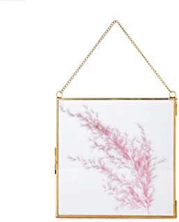 NCYP Large Wall Hanging Brass Glass Artwork Certificate Photo Picture Display Frame Geometric Ornament Plant Specimen Clip Modern Vertical Decor Card Holder Small, Glass Frame only