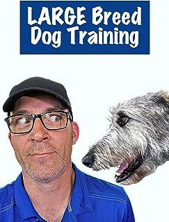 Large Breed Dog Training