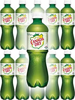 Canada Dry Diet Ginger Ale, 20oz Bottle (Pack of 10, Total of 200 Oz)