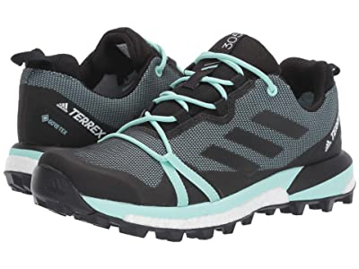 adidas Outdoor Terrex Skychaser LT GTX(r) (Ash Grey/Black/Clear Mint) Women