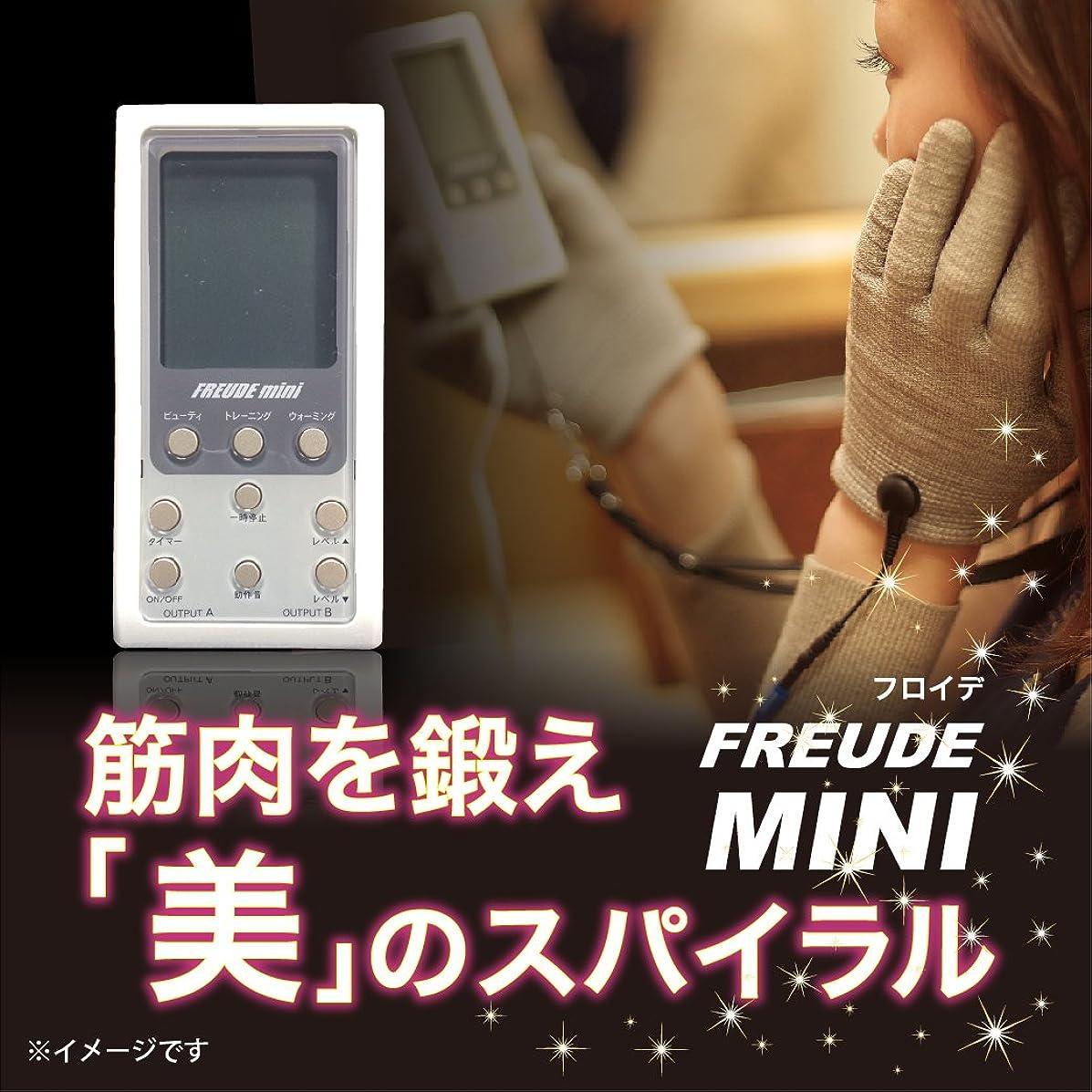 安価な凍るお祝いFREUDE-mini フロイデミニ 本体セット×1台(専用粘着パッド4枚付)
