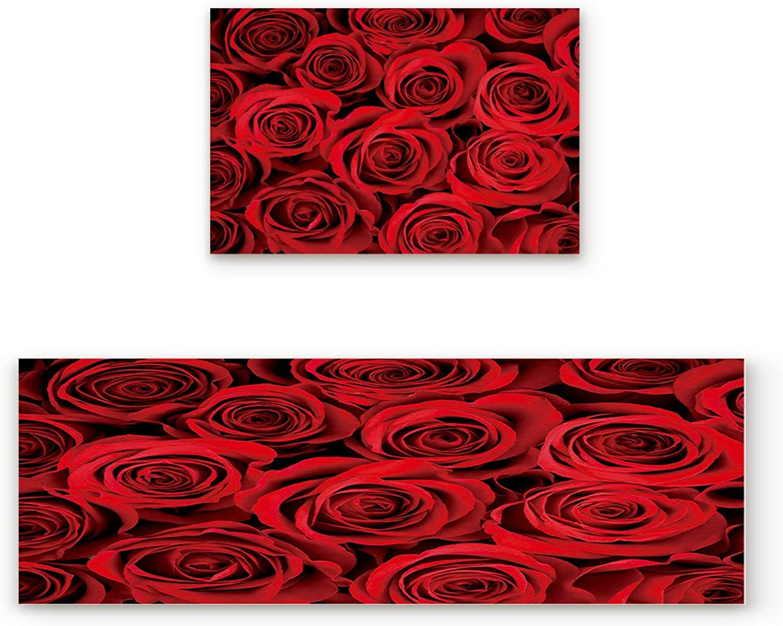 Findamy Non-Slip Indoor Door Mat Entrance Rug Rectangle Absorbent Moisture Floor Carpet for Floral Theme Dark Red pinks Doormat 19.7x31.5In+19.7x47.2In