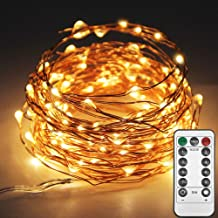 Twinkle Star 33ft 100LED Copper Wire String Lights Fairy String Lights 8 Modes LED String Lights USB Powered with Remote C...