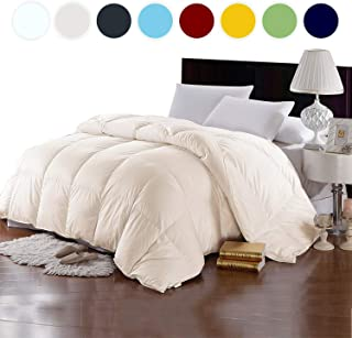 Bedding Homes 100% Organic Cotton 500 GSM Box Stitched Comforter 600 TC GOTS Certified Luxury Light-Weight Italian Finish Quilt Cozy Ultra-Soft Fluffy by (King/Cal-King, Ivory)