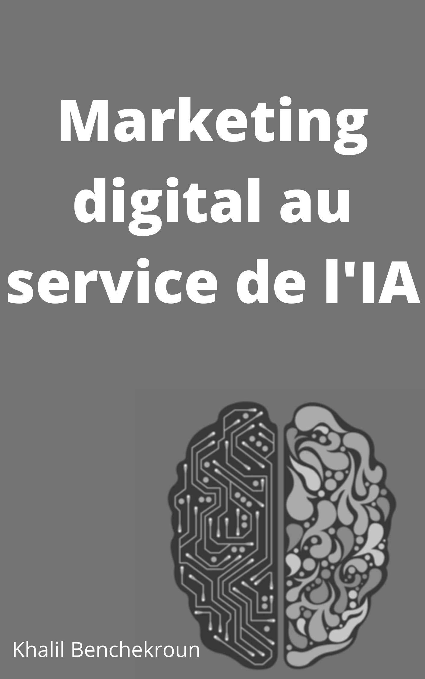 Marketing digital au service de l'IA (French Edition)