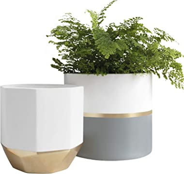 Large White Ceramic Plant Pots - Garden Planters 10 + 8.1 Inch Indoor Flower Pots, Plant Containers with Gold and Grey Detail