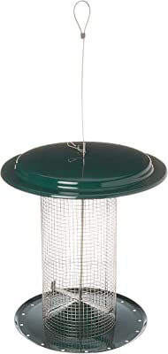 Bird Stuff SD700 Small Dome Sunflower or Peanut Feeder, Green