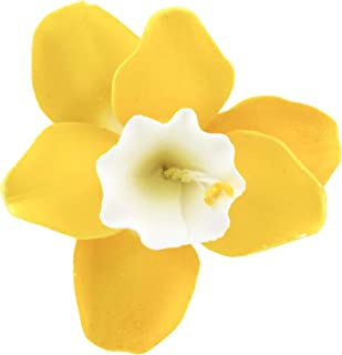 Global Sugar Art Daffodil Sugar Cake Flowers Yellow/White Throat, 6 Count by Chef Alan Tetreault