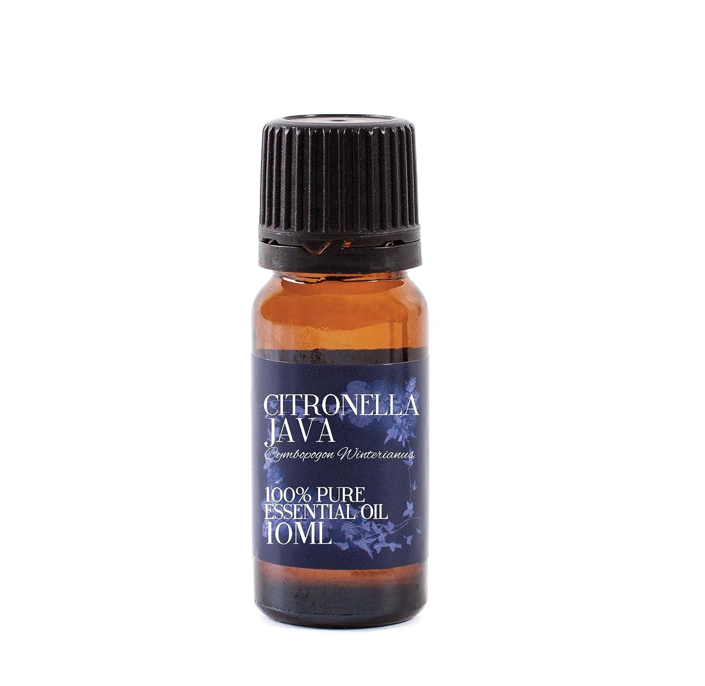 永遠に繰り返しユーモラスMystic Moments | Citronella Java Essential Oil - 10ml - 100% Pure