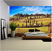 wall26 - Cypress Trees Scenic Road. Siena, Tuscany, Italy. - Removable Wall Mural | Self-Adhesive Large Wallpaper - 100x144 inches