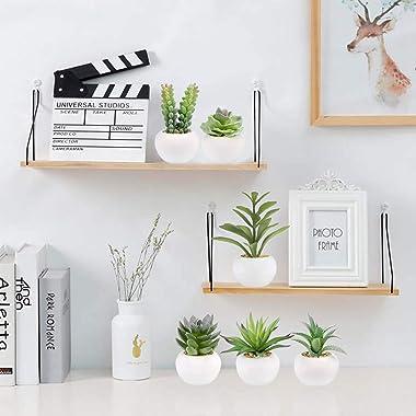 Greentime Set of 6 Succulents Plants Artificial in Mini White Ceramic Pots,Small Fake Succulents Plants,Faux Indoor Succulent