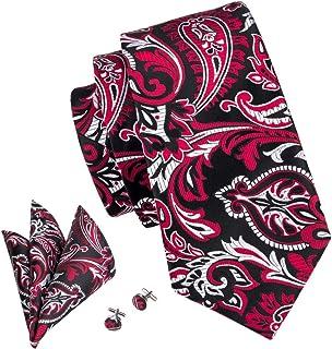 Barry.Wang Men Paisley Tie Silk Tie Pocket Square Cufflinks Set Mens Necktie Set