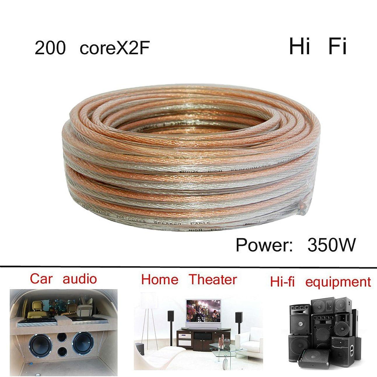 持つ大理石主観的High Fidelityサウンドボックスラインホーン電源アンプ200?core2?F接続line-984inches