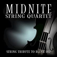String Tribute to blink-182
