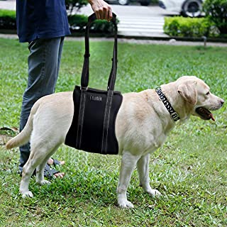 Sunmid Safety Dog Harness Dog Lift Harness Support Rehabilitation Harness with Handle Assist Sling Helps Dogs with Weak Front or Rear Legs Stand Up, Walk, Get Into Cars, Climb Stairs
