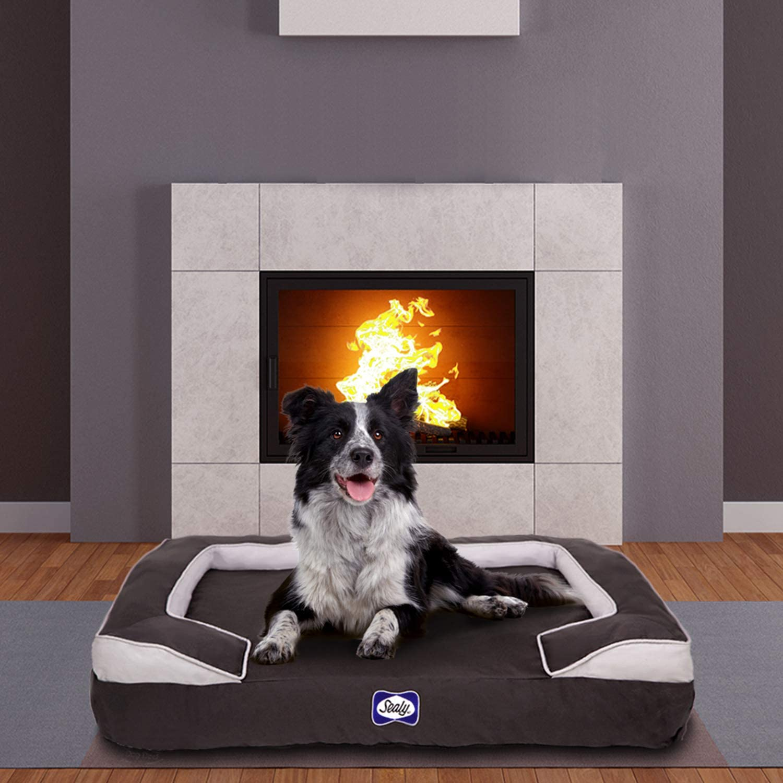 Sealy Dog Bed Cushy Cuddler   Crushed memory and orthopedic foam bolstered dog bed, Extra Large Grey