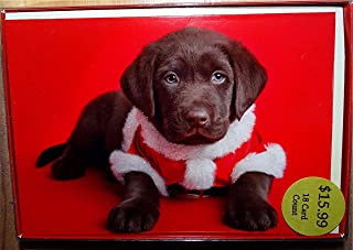 Chocolate Labrador Puppy Dog Dressed Like Santa Claus Christmas Cards, New in Box!