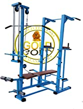 GOLD FITNESS A Tower with Push up DIPS and Workout with 20 in 1 Bench
