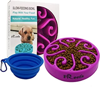Best slow feed dog bowl for small dogs Reviews