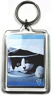 PC3721 @ Portachiavi per foto grande in acrilico trasparente con portafoto di dimensioni 50 x 35 mm - Modello 92033 (5 pez...