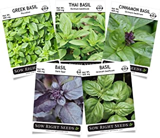 Sow Right Seeds - Basil Seed Collection - Genovese, Greek, Opal, Thai, and Cinnamon Basil to Plant, Non-GMO Heirloom Seeds with Instructions for Planting, Indoors or Outdoor; Great Gardening Gift