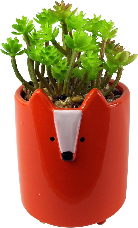 18cm Ceramic Orange Fox Planter Succulent Albuquerque Mall Manufacturer OFFicial shop with Plant Artificial