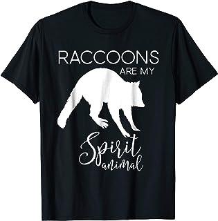 Raccoon Racoon Spirit Animal J000466