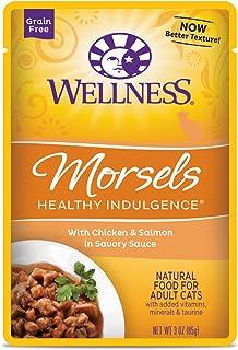 ウェルネス キャットフード 成猫用(1歳以上) ヘルシーインダルジェンス(穀物不使用) 香るとろみスープ仕立てチキン&サーモン 85g×12袋 (ケース販売)