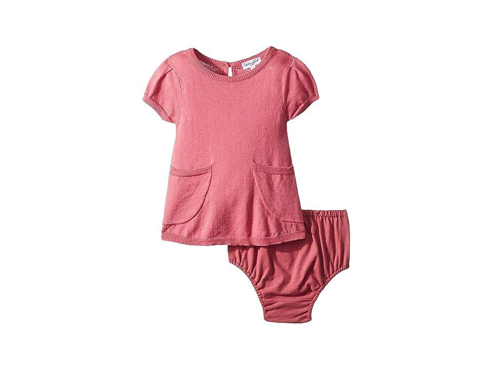 Splendid Littles Sweater Knit Dress Set (Infant) (Rose Tweed) Girl