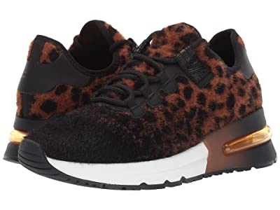 ASH Krush (Tan/Black) Women
