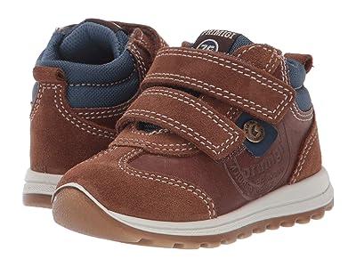 Primigi Kids PTI 43627 (Toddler) (Brown) Boy