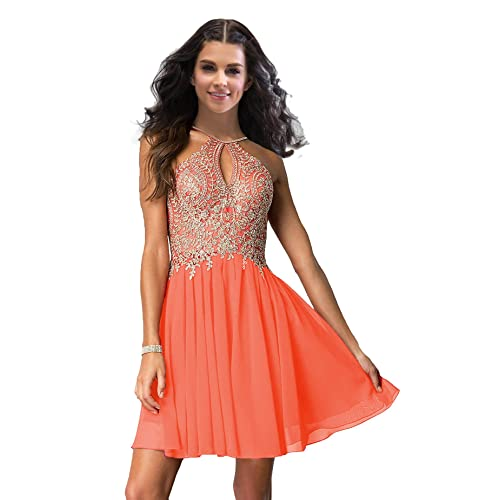 Plus Size Orange Homecoming Prom Dresses: Amazon.com