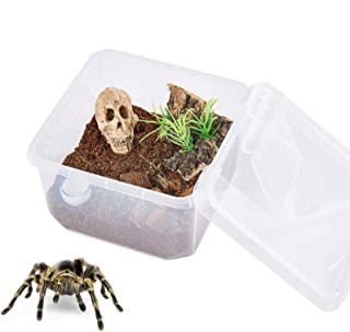 PETLAOO Critter Keeper,Mini Insect Carrier,Plastic Aquarium, Portable, Ventilated, Enough Viewing Space, with 5 Accessorie...