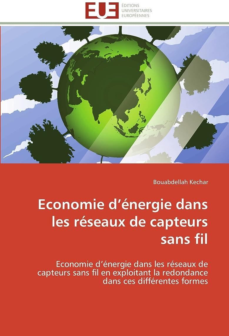 欠かせない道を作るダーリンEconomie D énergie Dans Les Réseaux de Capteurs Sans Fil (Omn.Univ.Europ.)