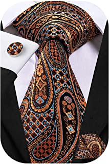 Dubulle Mens Paisely Silk Tie and Pocket Square Set