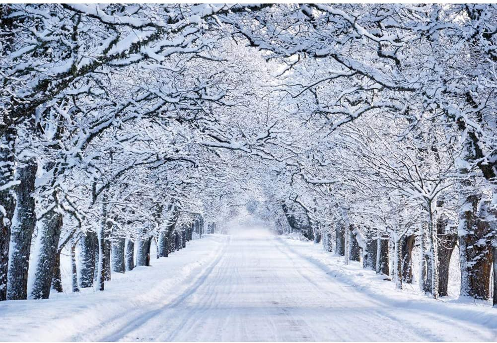 YongFoto 7x5ft Winter Wonderland Backdrop Snow World Pathway Christmas Background for Photography Christmas Banner New Year Party Supplies Kids Adult Photo Studio Props