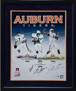 Pat Sullivan, Cam Newton and Bo Jackson Auburn Tigers Framed Autographed 16