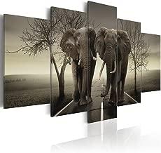 Best grey elephant wall art Reviews