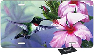 Best hummingbird license plate Reviews