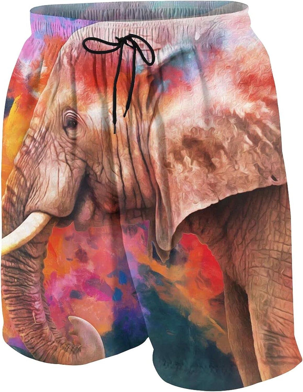 FuYin Boys Teens Swim Trunks Modern Oil Painting of Elephant Quick Dry Beach Board Swim Shorts 7-18T