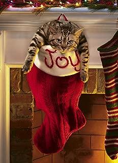 Avanti Christmas Cards, Overstuffed Stocking, 10-Count