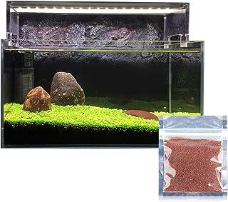 Etopfashion アクアリュム用品 水草シード 水槽 ミニ種子 プレミアムシード 観賞用 水生植物 水槽飾り 最適な温度25度 増殖スピード速い 無農薬 栽培が簡単